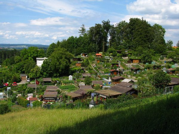 Typical allotment garden on Käferberg hill in Zürich, Switzerland