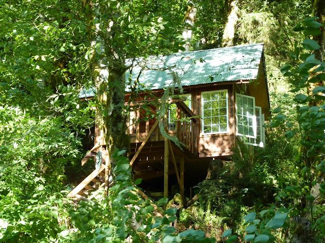 Off-Grid Cabin in Oregon For Sale